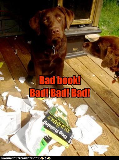 bad book labrador labradors mess punishment scolding shredded