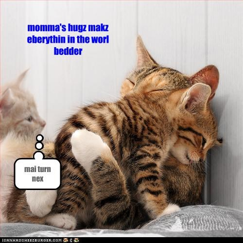 best of the week,caption,captioned,cat,Cats,holiday,hug,hugging,hugs,kitten,love,mothers day