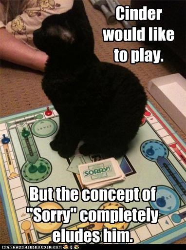 board game,caption,captioned,cat,concept,do want,double meaning,eludes,game,play,sorry