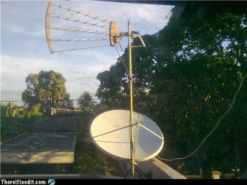antenna,satellite dish,woody,wtf