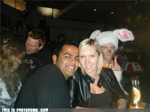 beer bunny costume - 4720691968