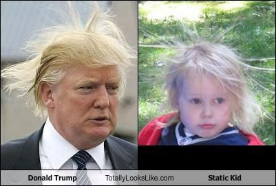 donald trump,hair,static electricity,static kid