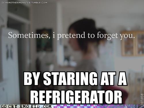 emolulz,food,forget,refrigerator