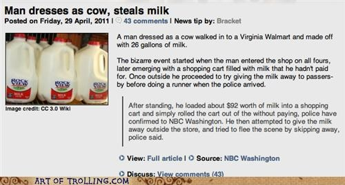 cow,IRL,milk,thief