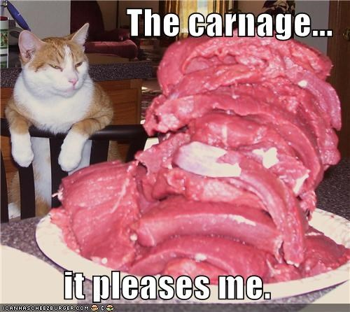 approval best of the week caption captioned carnage cat like meat noms pleases tabby