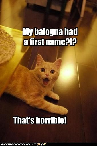 best of the week,bologna,caption,captioned,cat,exclamation,first name,had,horrible,jingle,oscar mayer,realization,shocked,surprised,tabby