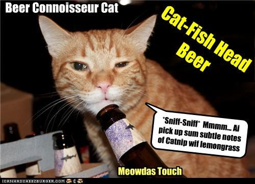 Cat-Fish Head Beer Meowdas Touch *Sniff-Sniff* Mmmm... Ai pick up sum subtle notes of Catnip wif lemongrass Beer Connoisseur Cat