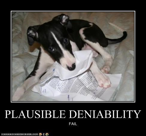 caught crime deniability evidence FAIL plausible puppy whatbreed