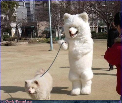 dog costume matching - 4726408192