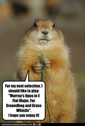 "For my next selection, I should like to play: ""Murray's Opus in E Flat Major, For Groundhog and Grass Whistle"". I hope you enjoy it!"