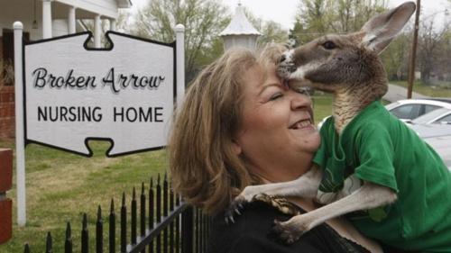 Broken Arrow Christie Carr happy ending Therapy Kangaroo - 4728295424