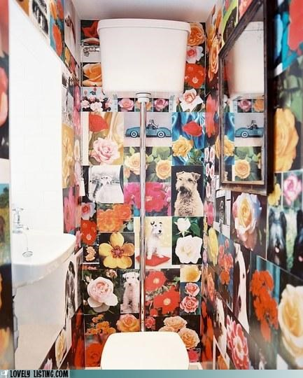 bathroom,dogs,flowers,wallpaper