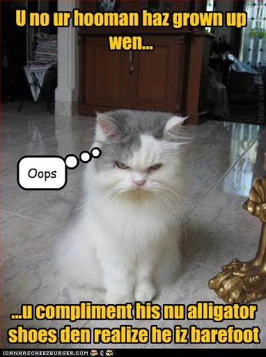 alligator caption captioned cat child growing up grown up human realization shoes - 4729843456