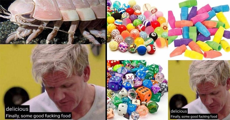 Funny memes of Gordon Ramsay eating gross or inedible food.