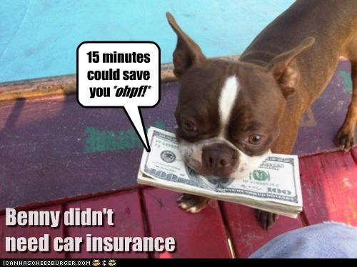 15 minutes could save Benny didn't need car insurance *ohpf!* you