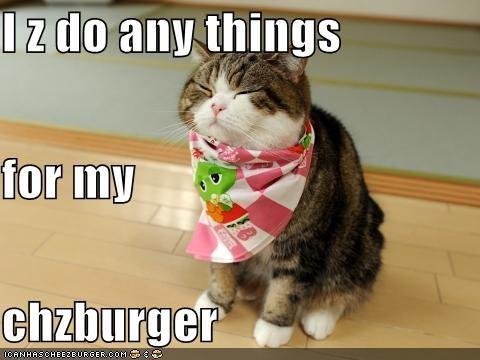 Cheezburger Image 4734823680