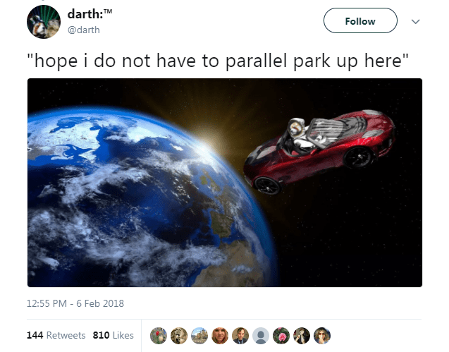 dogs car elon musk space - 4735237