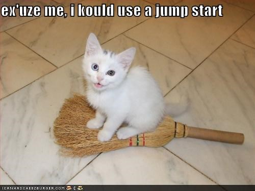 broom caption captioned cat could excuse me jump jump start kitten start use - 4736580864