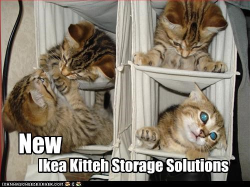 caption captioned cat Cats ikea kitten new solutions storage