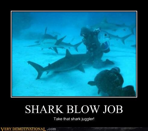 SHARK BLOW JOB Take that shark juggler!