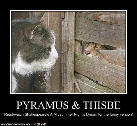 PYRAMUS & THISBE Read/watch Shakespeare's A Midsummer Night's Dream for the funny version!