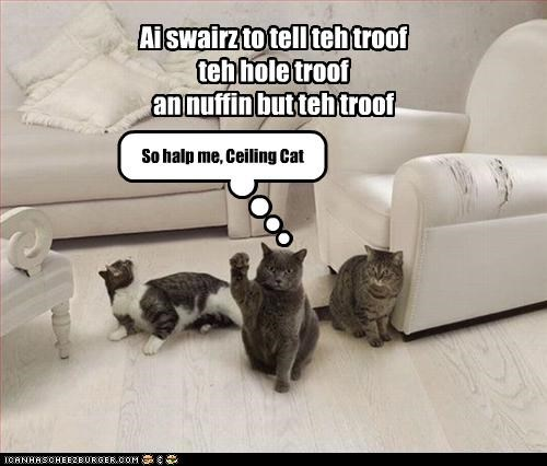 Ai swairz to tell teh troof teh hole troof an nuffin but teh troof So halp me, Ceiling Cat