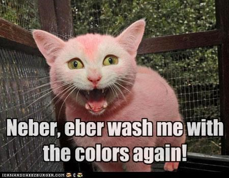 Neber, eber wash me with the colors again!