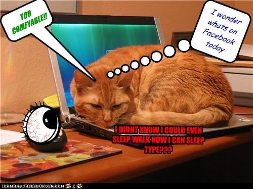 Cheezburger Image 4740323328