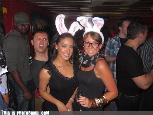 bewbs,bunny,playboy,surprise