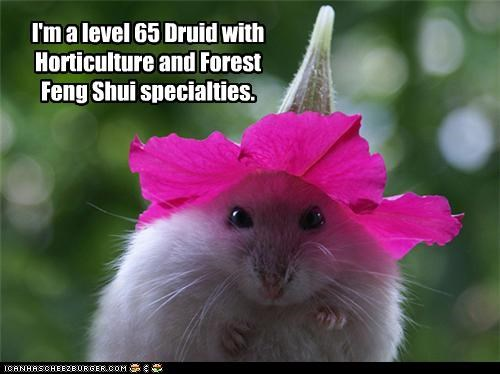65 best of the week caption captioned druid feng shui Flower Forest hamster horticulture level specialties world of warcraft - 4742629888