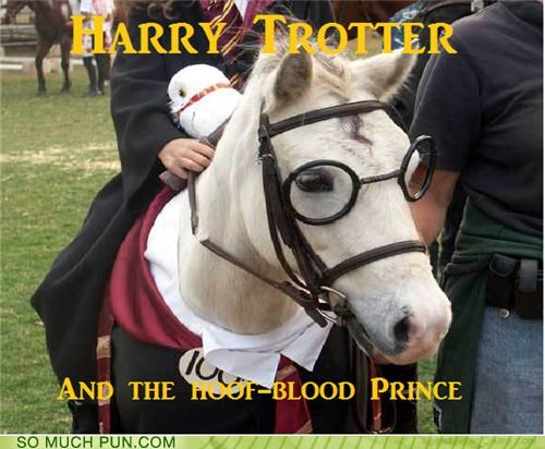 book,Harry Potter,harry potter and the half-blood prince,hoof,jk rowling,literalism,rhyming,series,similar sounding,title,trot,trotter