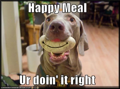 doing it right,happy,happy meal,meal,smile,smiling,weimaraner