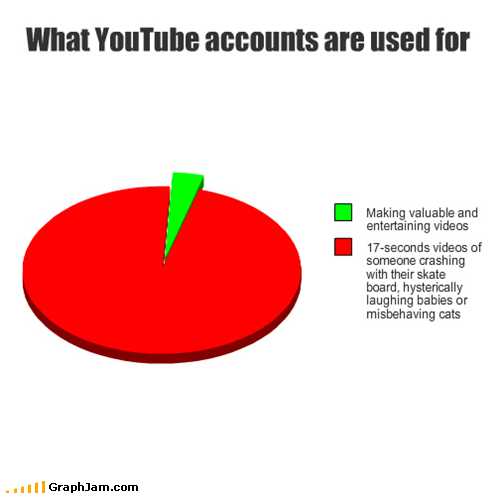 internet,legitimacy,Pie Chart,videos,youtube