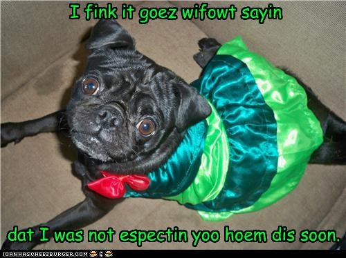 Awkward,caught,costume,dress,dressed up,expecting,goes,home,human,lolwut,not,pug,saying,SOON,without