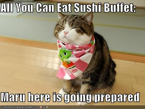 all you can eat,bib,buffet,caption,captioned,cat,maru,prepared,sushi