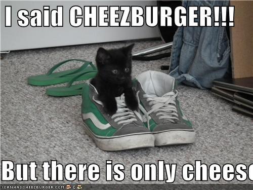 Cheezburger Image 4746552576