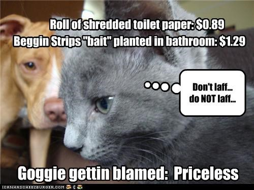 "Roll of shredded toilet paper: $0.89 Goggie gettin blamed: Priceless Don't laff... do NOT laff... Beggin Strips ""bait"" planted in bathroom: $1.29"