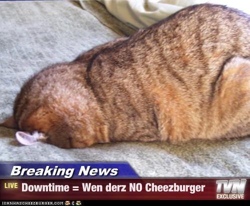 Cheezburger Image 4748862208