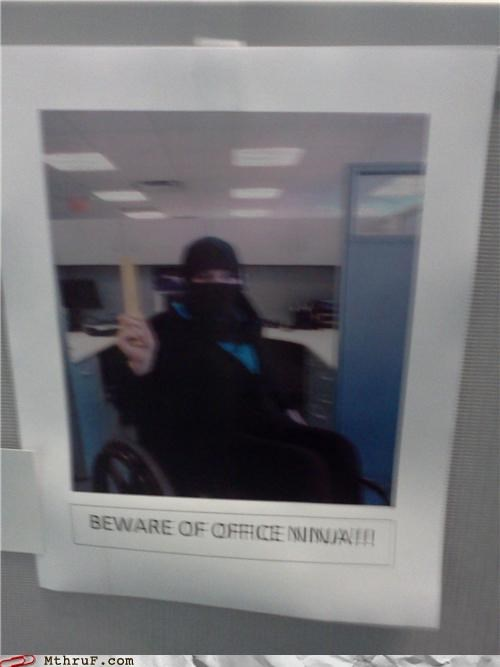 ninjas,nunchucks,wheelchair