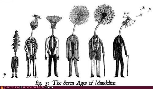 art dandelion Flower people species wtf - 4750069760