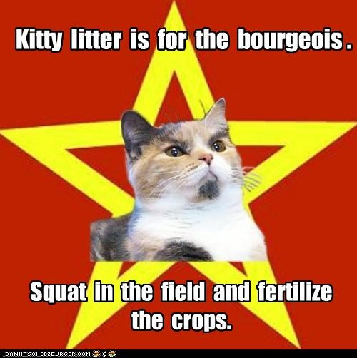 Kitty litter is for the bourgeois . Squat in the field and fertilize the crops.