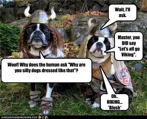 "Woof! Why does the human ask ""Why are you silly dogs dressed like that""? Master, you DID say ""Let's all go Viking"", remember? Oh.. HIKING... *Blush* Wait, I'll ask."