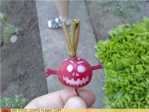 carved,demon,evil,face,radish