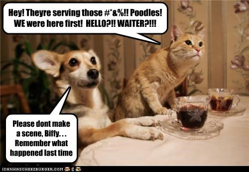 Hey! Theyre serving those #*&%!! Poodles! WE were here first! HELLO?!! WAITER?!!! Please dont make a scene, Biffy. . . Remember what happened last time