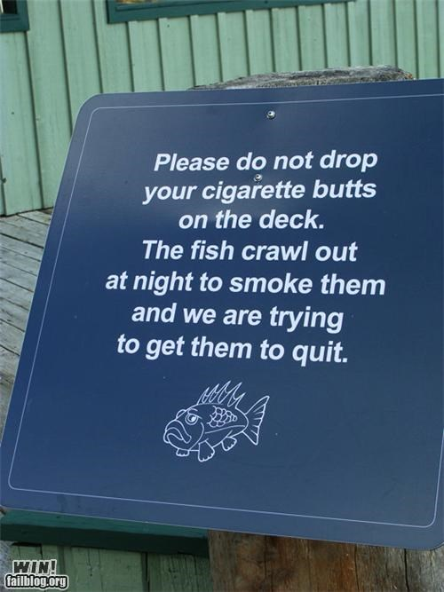 aquarium,fish,oh canada,signs,smoking