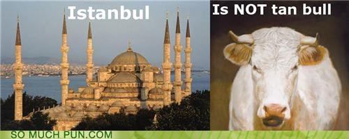 bull is is not istanbul literalism prefix tan