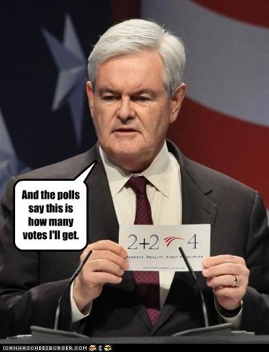 newt gingrich political pictures - 4752945664