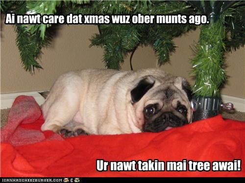 ago,away,christmas,do not want,dont-care,months,over,pug,taking,tree