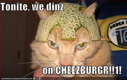 Cheezburger Image 475353856