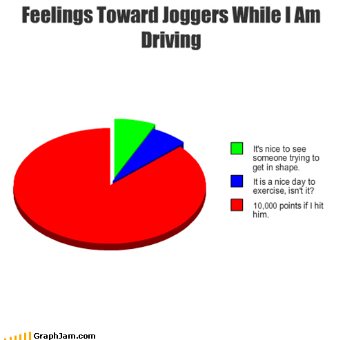 driving joggers Pie Chart points